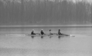 Rowers In The Mist