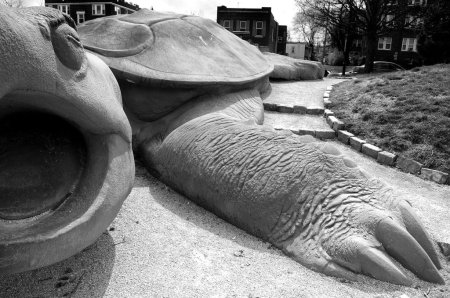 turtle, sculpture, playground, big turtle