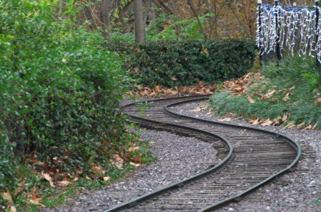 zoo, railroad, rails, narrow, path