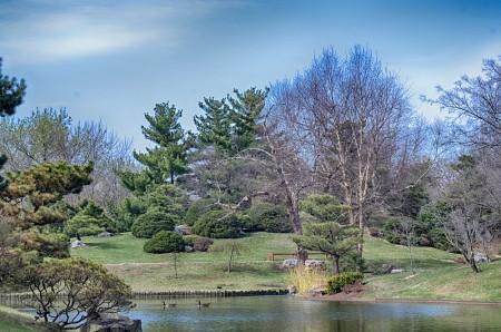 green, spring, botanical garden, wpc, wordpress