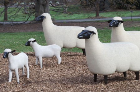 wpc, unusual, ceramic sheep herd